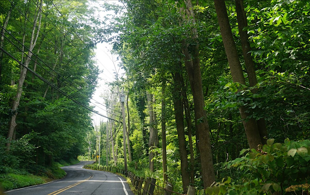 viaggio on the road connecticut